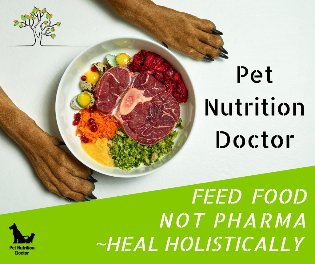 """A visual for the course """"Feed Food Not Pharma ~Heal Holistically"""", Linked: brings you to the site where you can purchase  one or both of the courses."""