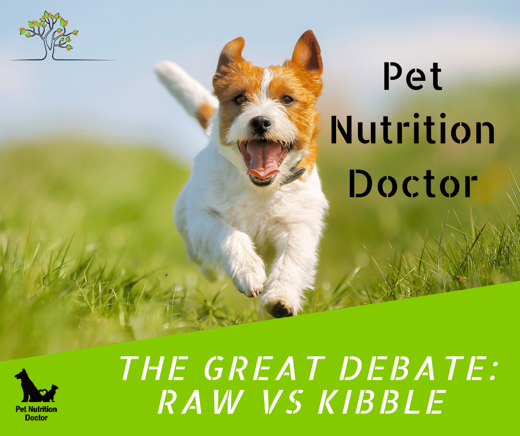 """A visual for the course """"The Great Debate: Raw Vs Kibble"""", Linked: brings you to the site where you can purchase one or both of the courses."""