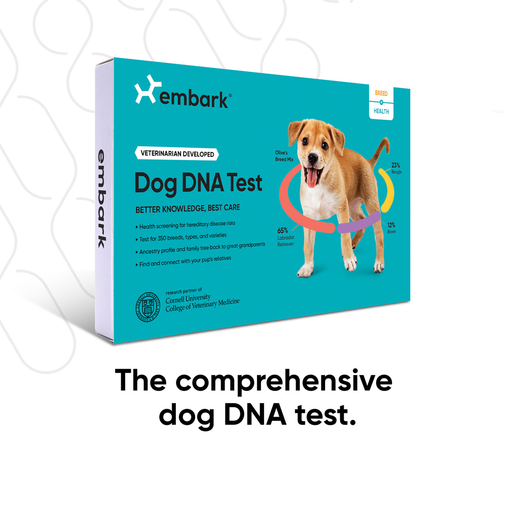 An Example of an Embark Dog DNA Test Health + Breed Kit